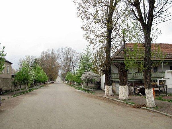 Грузия - Цалка - Центральная улица